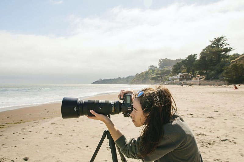 A tripod for travel and wildlife photographers is making waves online