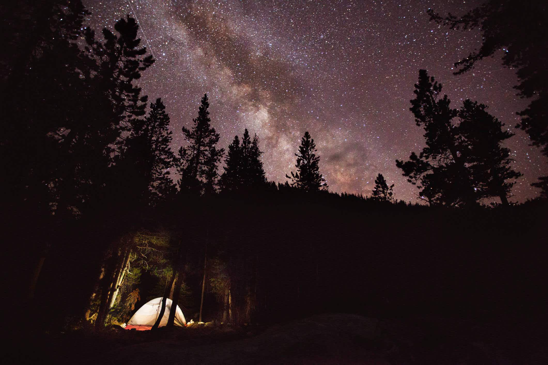 The best spots in the US to watch the Perseid meteor shower this summer
