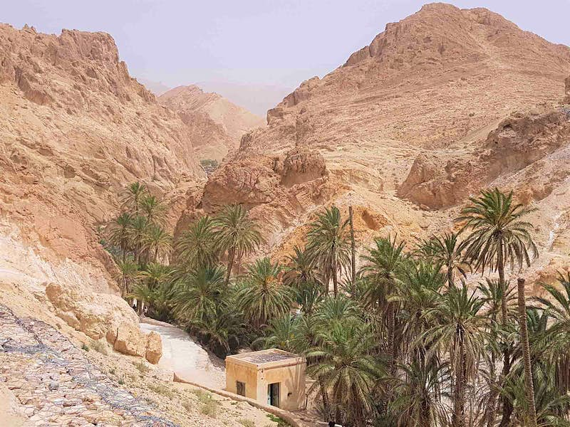 Visit ther jaw-dropping canyons of Tamerza