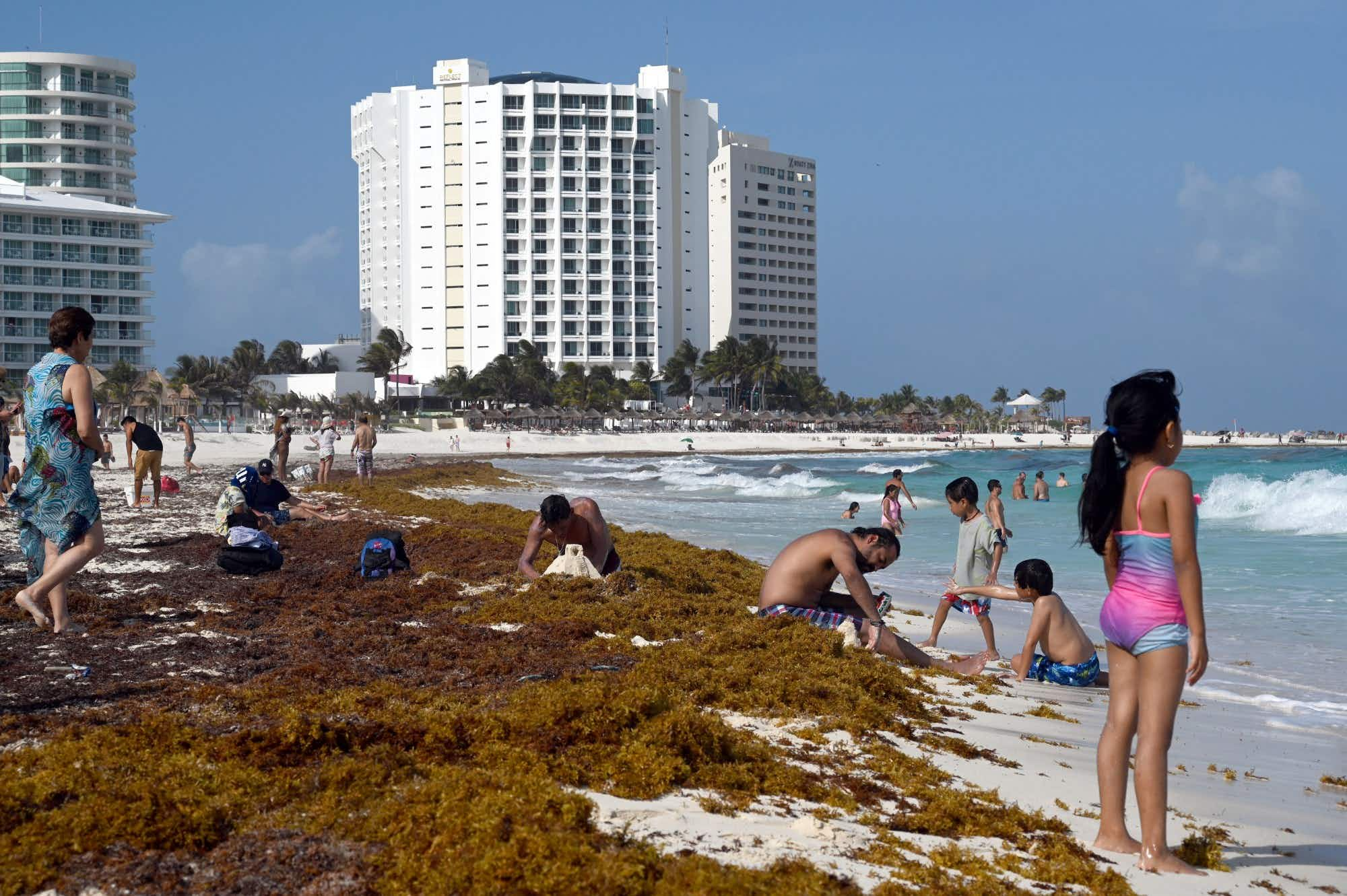 Stinky seaweed is coating beaches and coastlines in these popular vacation spots