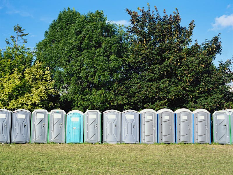 Portable toilet cubicles lined up at edge of trees